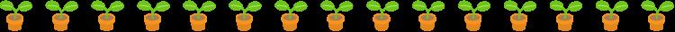 植物の芽と点線の罫線イラスト