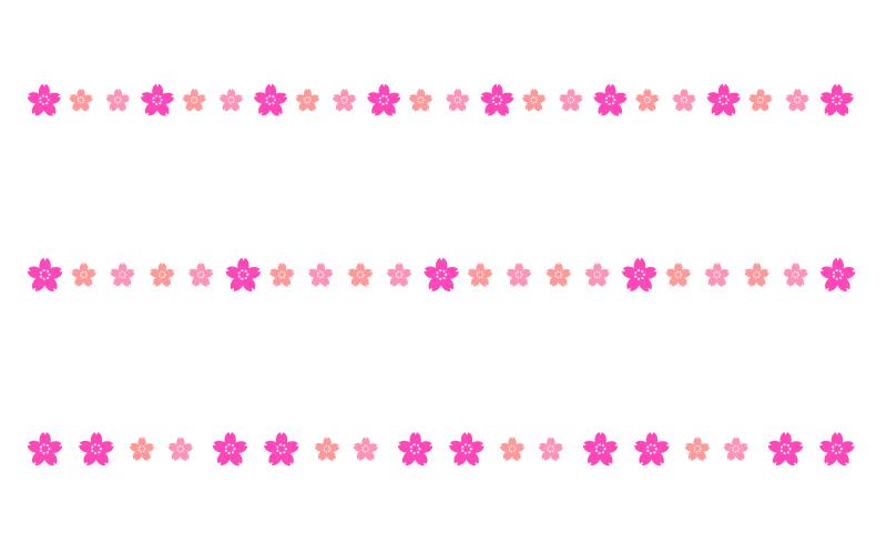 桜の罫線イラスト02