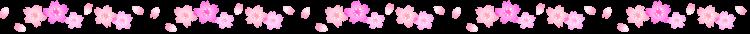 桜の罫線イラスト03