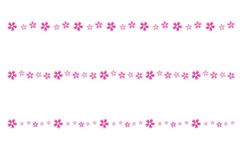 桜の花びらの罫線イラスト04